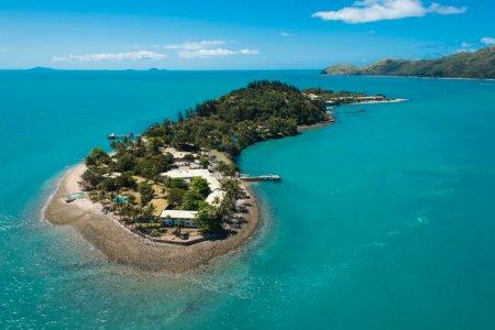 جزيرة داي دريم