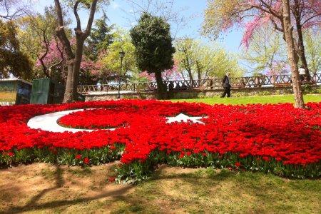 حديقة اميرجان في تركيا