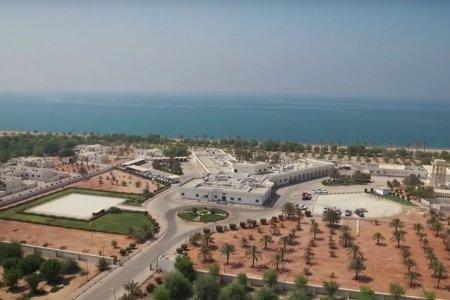 جزيرةدلمافي أبوظبي