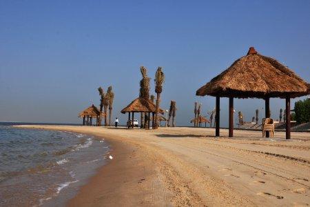 منتزه شاطئ النخيل في الجبيل