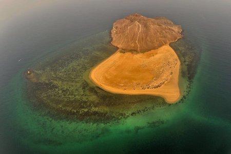 جزيرة كدمبل بالسعودية
