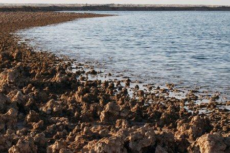 بحيرة ساوه في العراق
