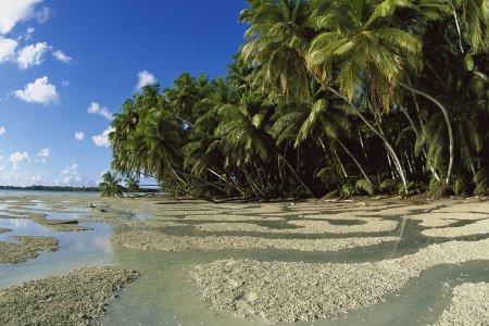 جزر بالميرا