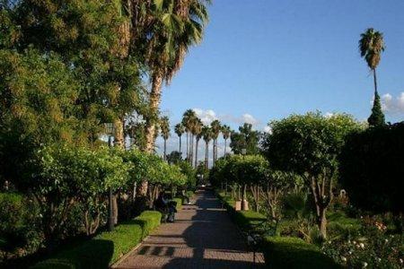 حدائق أكدال في مدينة مراكش