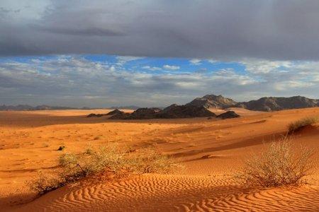 صحراء النفود الكبير بالسعودية