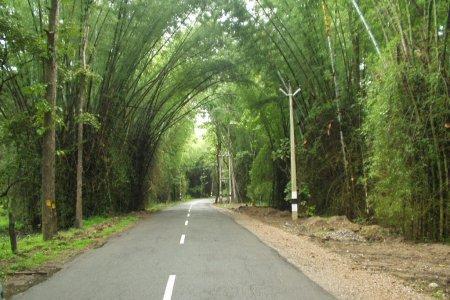 مدينة واياناد الهند