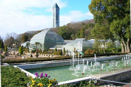 الحدائق النباتية في ناغويا