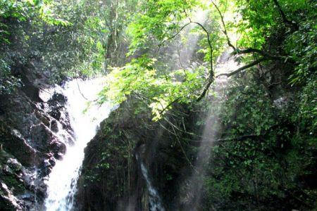 محمية و غابات بيلوم