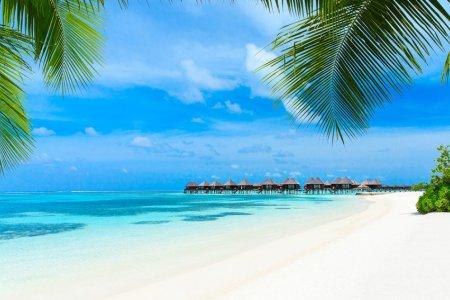 كم تبلغ مساحة جزر المالديف