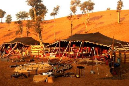 واحة البدو في رأس الخيمة