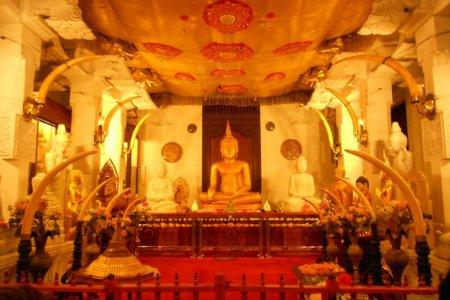 حجرة في معبد الاسنان