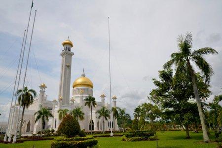 معلومات عن سلطنة بروناي