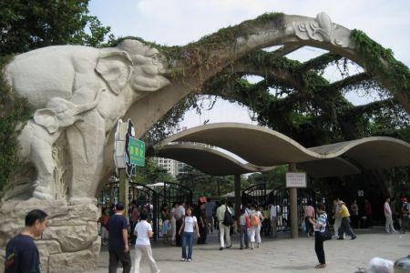 حديقة حيوان في شنغهاي - الصين