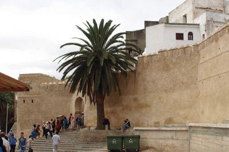 متحف الفنون المغربيّة في طنجة