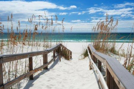 شواطئ نافارا بولاية فلوريدا