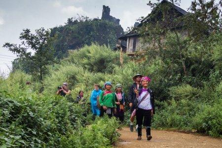 السياح في غابات سابا فيتنام