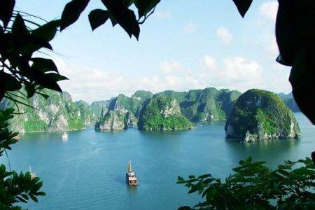 جزيرة كات با في فيتنام