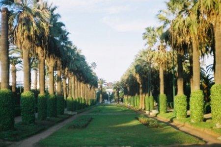 حديقة الجامعة العربية في كازابلانكا