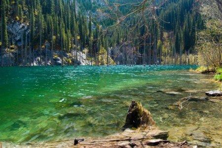 بحيرة كايندي في كازاخستان