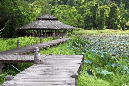 حديقة إيراوان الوطنية في كانشانابوري - تايلاند
