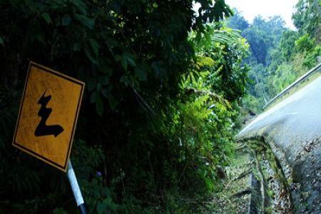 قرية ايرهنجت في لانكاوي - ماليزيا