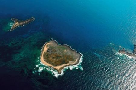 جزيرة الأرانب