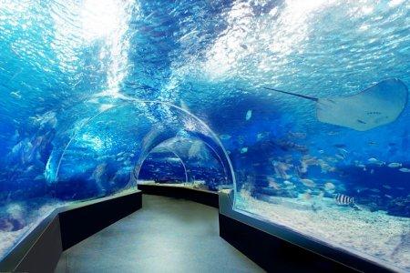 حديقة المحيط في مانيلا