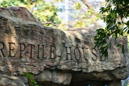 حديقة النباتات والحيوان في هونج كونج