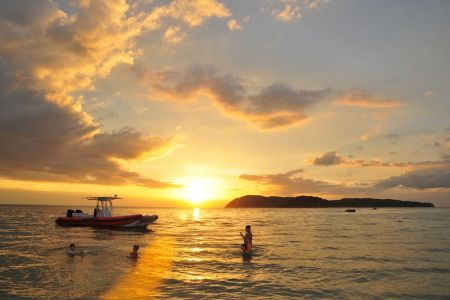 جزيرة جوز الهند