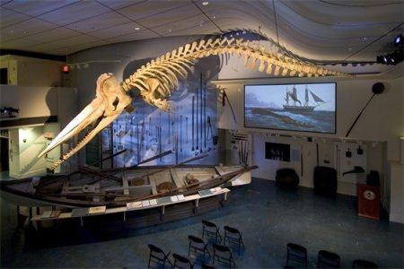 متحف نانتوكيت للحيتان