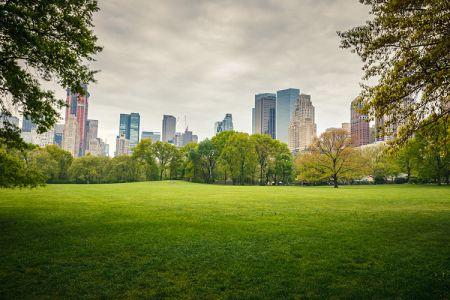 متنزه سنترال بارك نيويورك