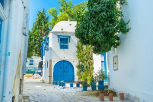 دليل السياحة في تونس العاصمة
