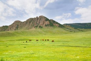 دليل السياحة في منغوليا