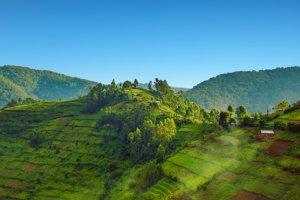 السياحة في أوغندا