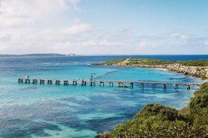 جزيرة كانغارو في استراليا