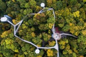 حديقة بايريشر فالد الوطنية
