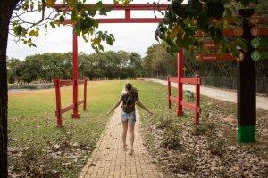 مسارات المشي بحديقة مانجابيراس