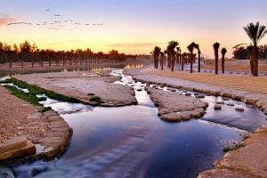 وادي حنيفةفي الرياض