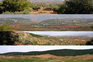 قرية الكمشة