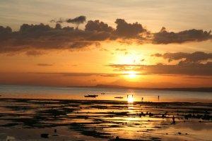 شواطئ بوهول في الفلبين