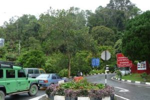 مرتفعات فريزر في باهانج - ماليزيا
