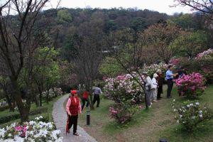 حديقة Yangmingshan الوطنية في تايوان