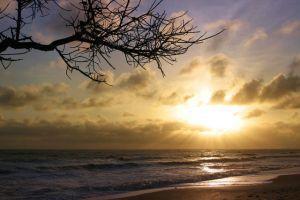 شاطئ ديسارو في جوهور بارو - ماليزيا