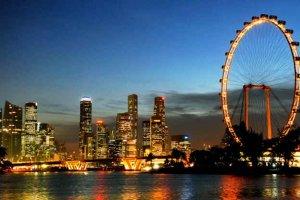 سنغافورة فلاير