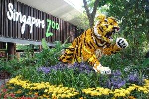 حديقة الحيوانات في سنغافورة