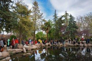 حديقة أرم في مدينة شيراز