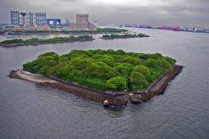 جزيرة أوديبا باليابان