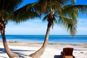 خليج تامبا