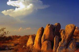 صحراء موهافي