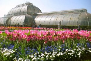 حدائق النباتات الملكية في كيو